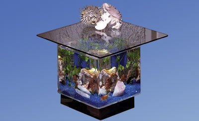 Midwest Tropical 670 Square Aquarium End Table