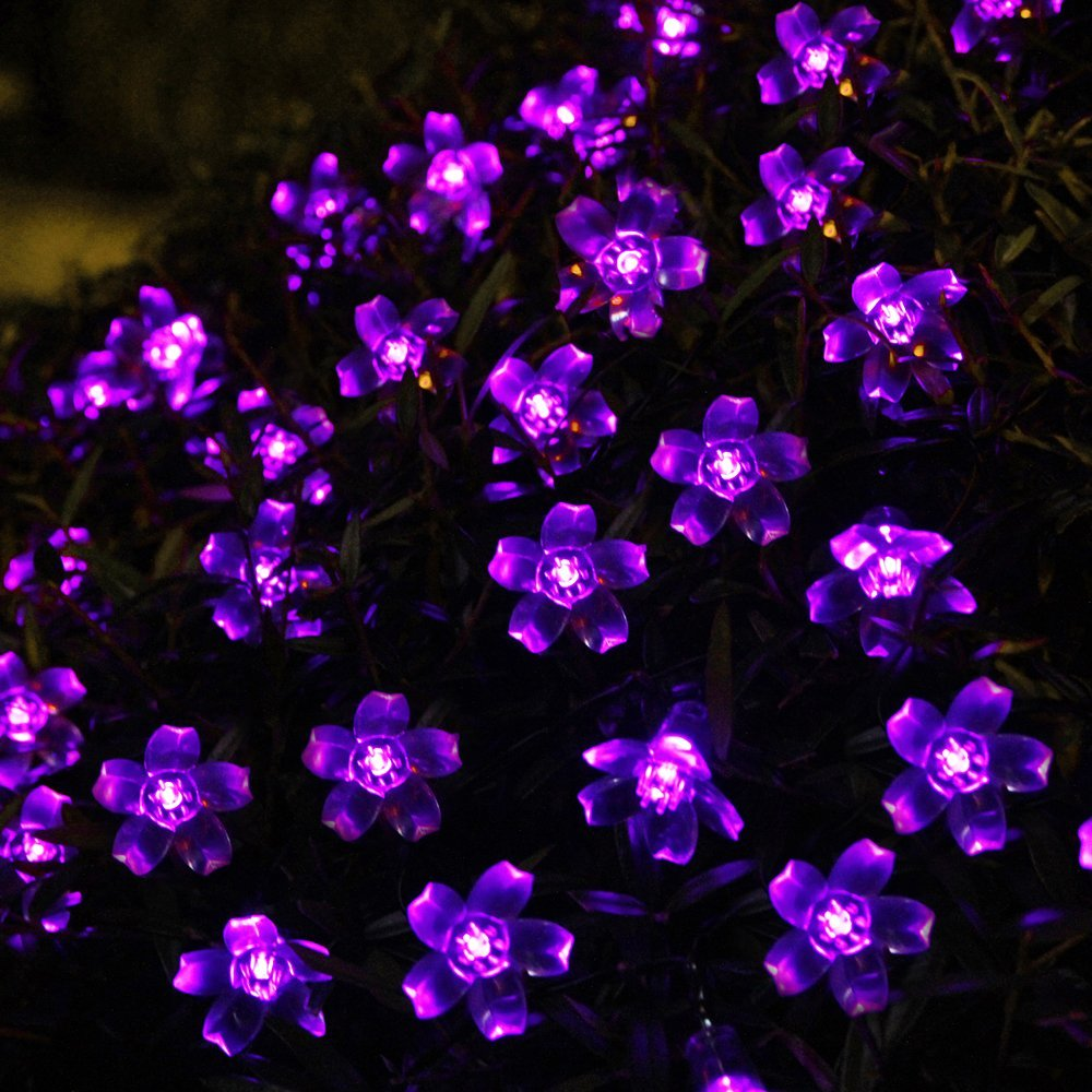 Solar Outdoor String Lights By Innoo Tech: 5 Best Purple Christmas Lights