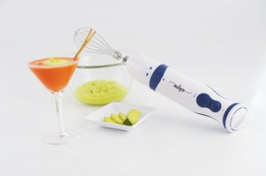 2 Speed Immersion Hand Blender