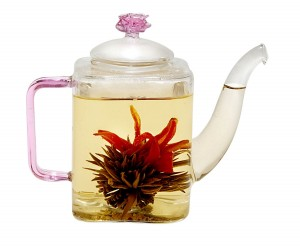 Tea Beyond Glass Teapot - A tea lover's must-have