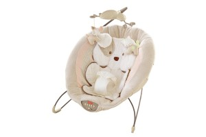 Fisher-Price Infant Bouncer - Great life savor