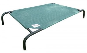 5 Best Elevated Pet Bed – Provide all year round comfort for your pet