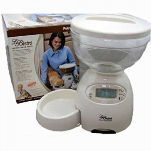 5 Best Automatic Pet Feeder – Great help for any cat lover