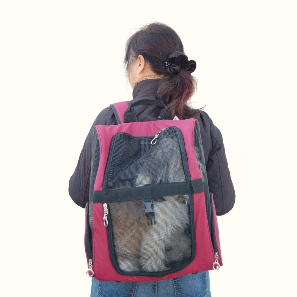 Backpack Pet Carrier For Cats