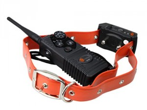 5 Best Electronic Training Collar – Say goodbye to your dog's big behavioral issues