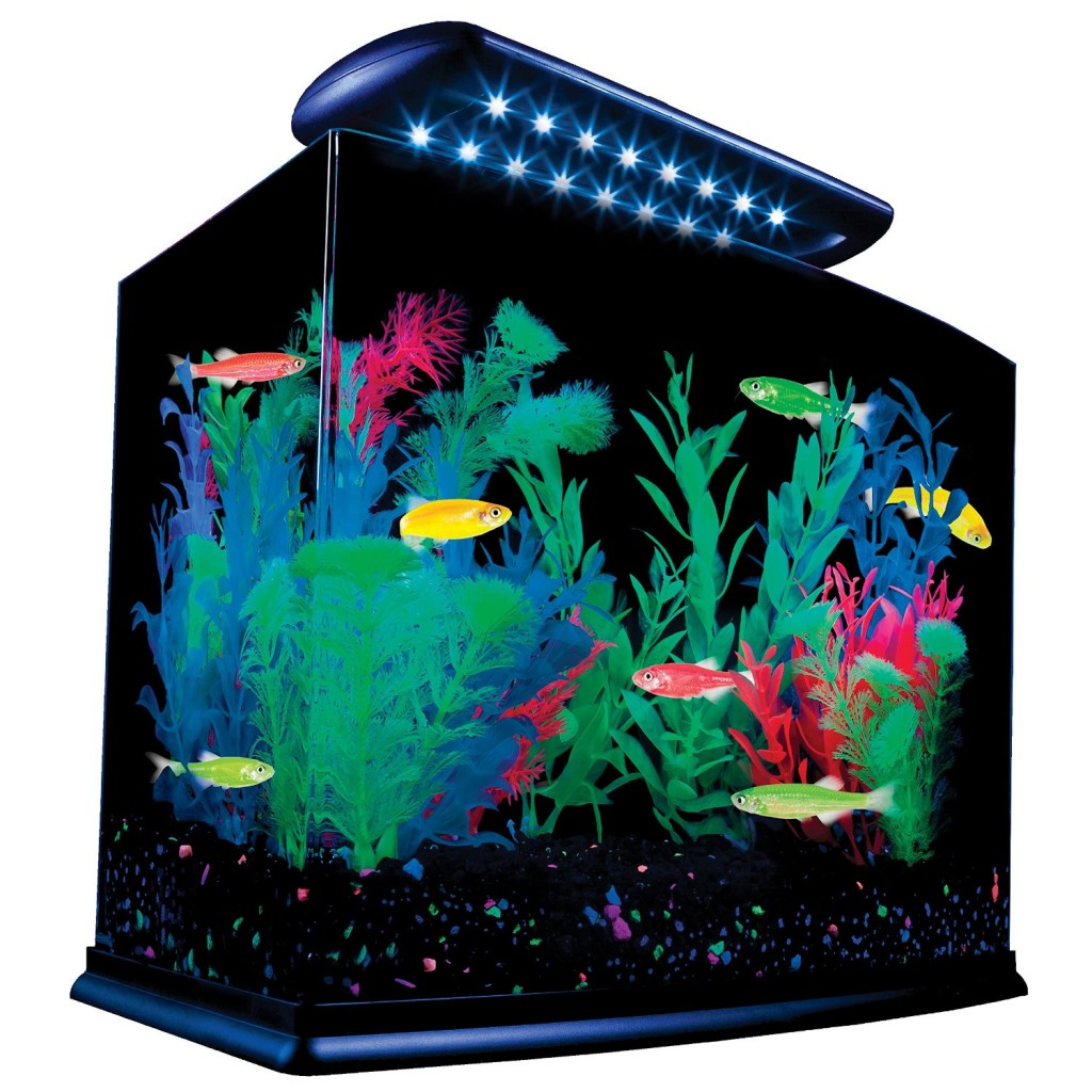 5 best tetra aquarium attractive sturdy and functional for Hexagon fish tank lid