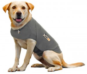 8 Best Dog Anxiety Shirt – Easy and efficient solution to calm and sooth away anxiety
