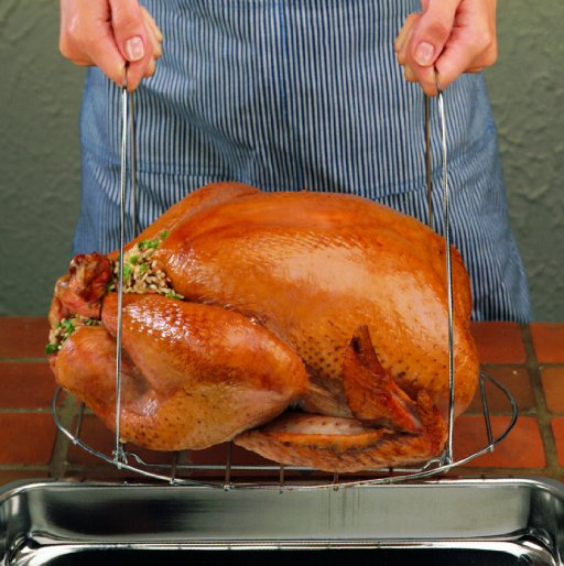 Best Turkey Lifter