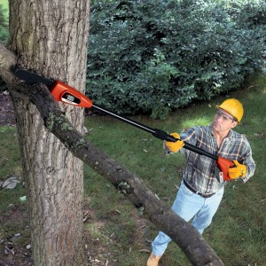Electric Pole Saw - A well manicured garden is in your reach