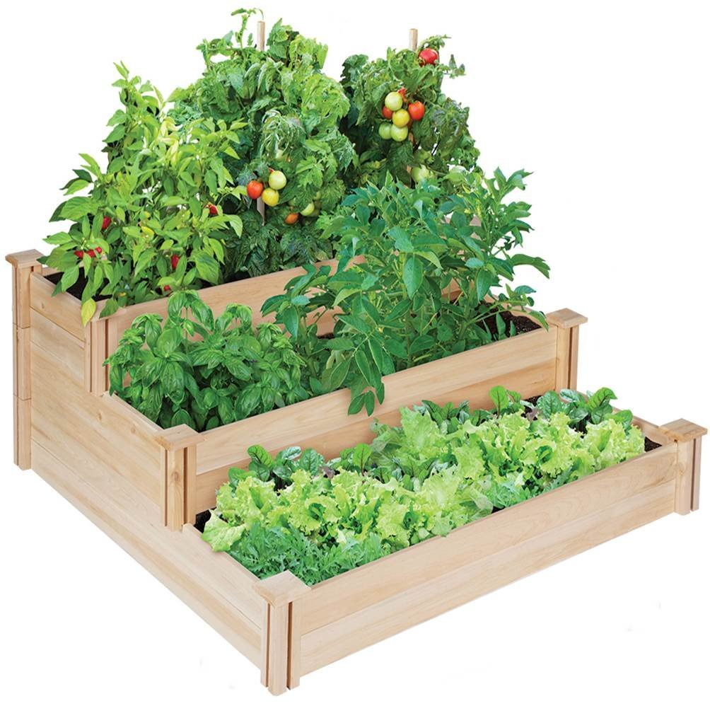 Get Great Harvests This Year