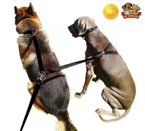 Double Dog Leash - 8ft Dual Dogs Lead Black