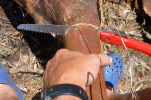 Folding Hand Saw - A perfect gardening tool for your pruning tasks