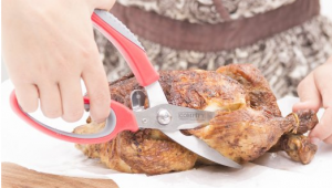Poultry Shears - Make your cutting tasks easier
