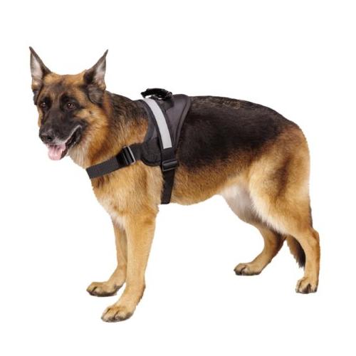 big-dog-soft-reflective-no-pull-harness