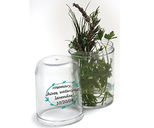 fresh-herb-keeper-reduce-waste-and-save-money