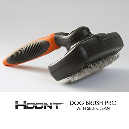5 Best Dog Self Cleaning Slicker Brush Best Gift For