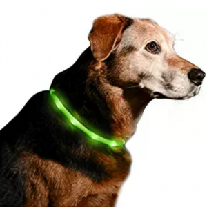 5 Best USB Rechargeable LED Dog Collar – Save your dog's life