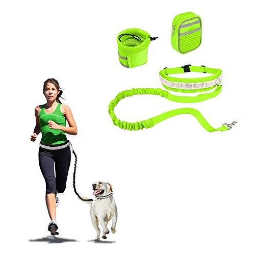 reflective-dog-leash