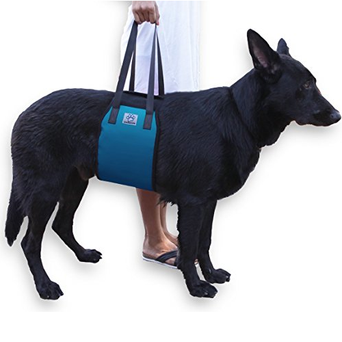 Blue Dog Lift Support Harness for canine aid