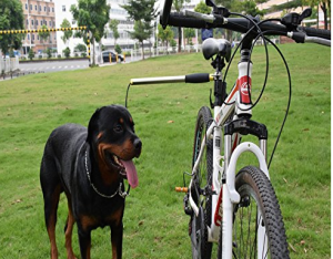 Dog Bicycle Exerciser Leash - Safely walk your dog and ride your bike at the same time