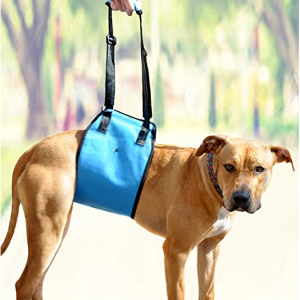 Dog Lift Harness By AMZpets