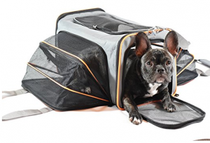 Expandable Pet Carrier - Your best friend's best travel companion