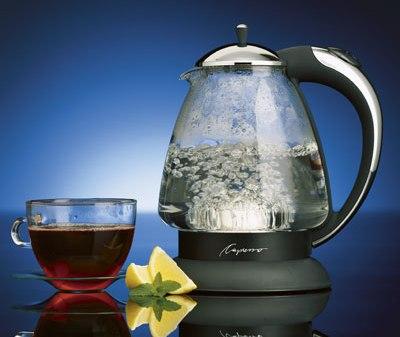 Capresso H20 Glass Water Kettle