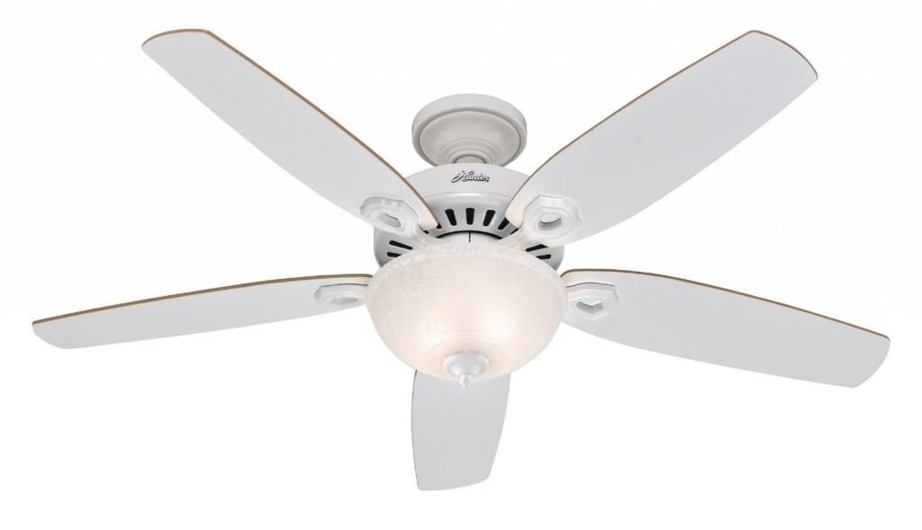Hunter Fan Company 53250 Pro's Best 5-Minute 52-Inch 5-Blade Single Light Ceiling Fan