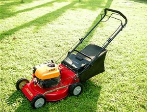 5 Best Lawn Mowers