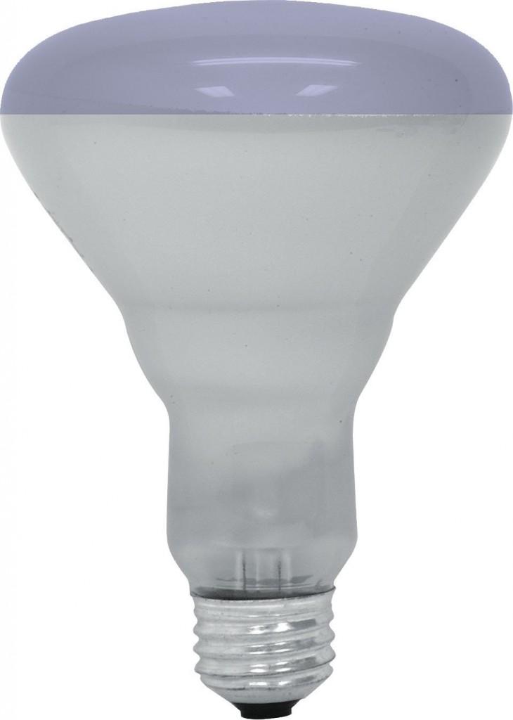 GE Lighting 20996 65-Watt R30