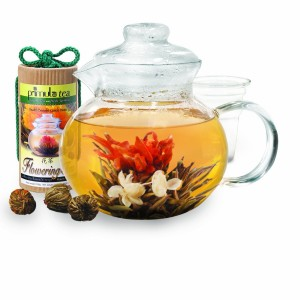 5 Best Primula Glass Teapot – Visual, aromatic and delicious