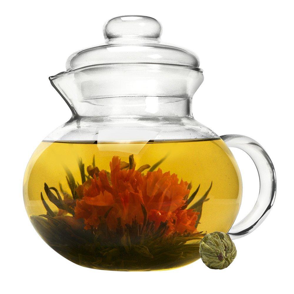 Primula Glass Stovetop Tea Pot