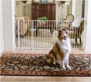 Carlson Pet Gate - Best protection to your pets