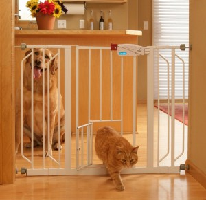 5 Best Carlson Pet Gate – Best protection to your pets