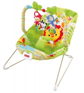 5 Best Fisher-Price Infant Bouncer – Great life savor