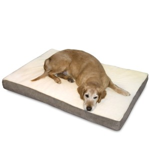 5 Best Orthopedic Dog Bed – Your dog will have comfortable sleep