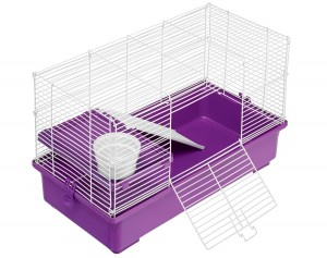 5 Best Rat Habitat – Great place for your pet rats to sleep and play