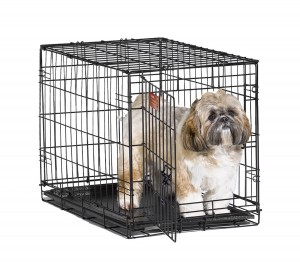 5 Best Folding Dog Crate – Create safe and comfortable environment for you dog