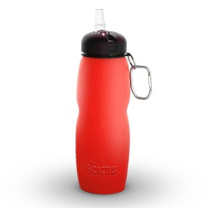 Cactus Collapsible Water Bottle