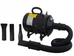 5 Best Pet Dryer – Save time while keeping your pet beautiful