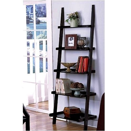 Unique 72 High LEANING LADDER STYLE MAGAZINE