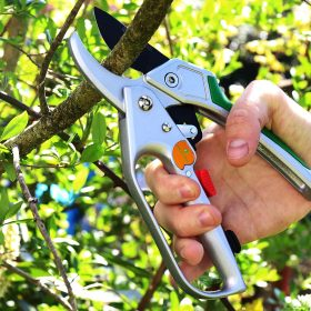 Best Ratchet Pruning Shears