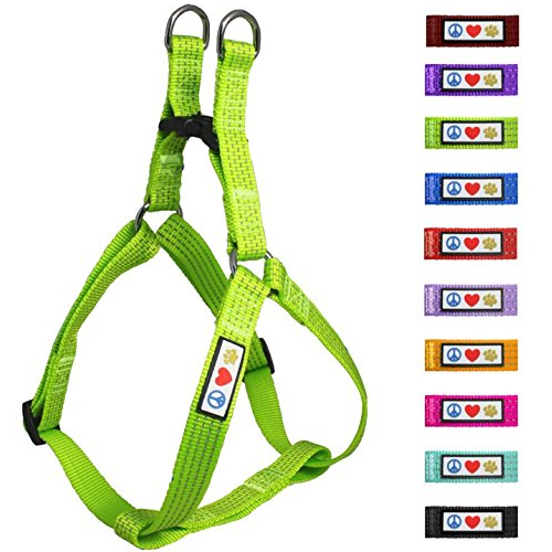 pawtitas-reflective-dog-harness