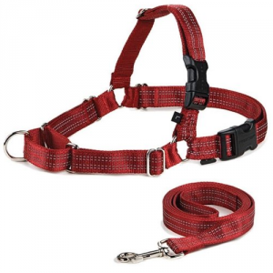 5 Best Reflective Dog Harness – A great walk for you and your dog