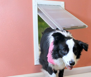 dog-door-for-wall-for-any-dog-owner