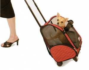 Rolling Backpack Pet Carrier - For enjoyable traveling experience