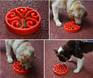 Slow Feed Dog Bowl - Must have for fast eating pet