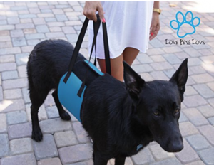 Dog Lifting Harness - A life saver for your and your dog
