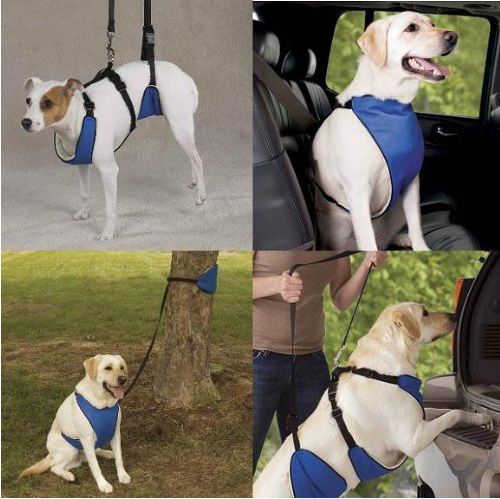 Guardian Gear Nylon Lift and Lead 4-In-1 Dog Harness