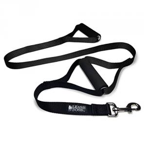 5 Best Double Handle Dog Leash – Enhance you dog walking experience